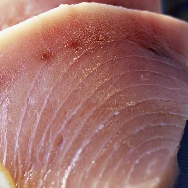 Pesce Spada fresco